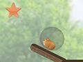 Хомяк в шарике