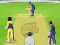 Конкуренты крикета