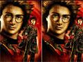 Различие Гарри Поттера