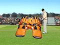 Тестовый крикет