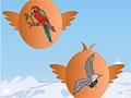 Раскрась страницы - птицы