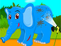 Травма ноги слоненка