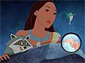 Покахонтас: Поиски енота