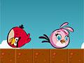 Злые птицы принимают душ