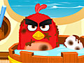 Злые птицы: Медицинский уход
