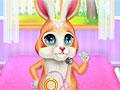 Кролик в больнице