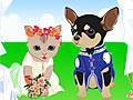 Свадьба животных