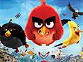 Злые птицы: Попасть в мишень