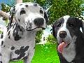 Симулятор собаки 3Д